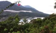 Wisata Desa Dan Seribu Kunang-kunang