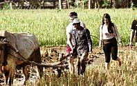 Kenapa Banyak Desa Tertarik Mengembangkan Desa Wisata, Ini Jawabannya