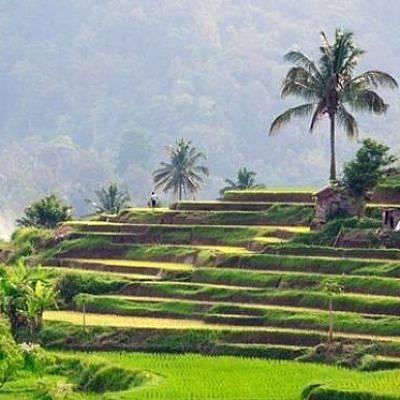 Membangun BUMDesa Bisa Memeratakan Kesejahteraan ke Seluruh Warga Desa