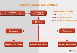 Seperti Apa Seharusnya Struktur BUMDesa?
