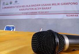 Gampong-gampong di Aceh Genjot Penguatan Lembaga Dukung BUMG