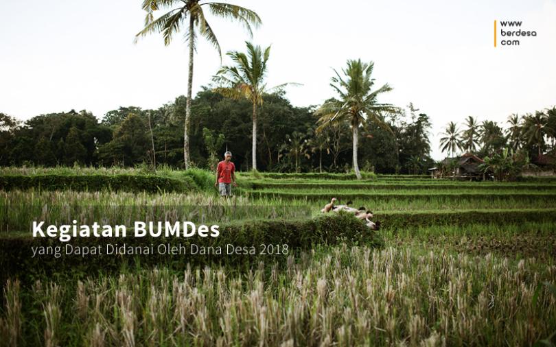 Kegiatan BUMDes yang Dapat Didanai Oleh Dana Desa 2018