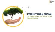 Perhutanan Sosial, Cara Memanfaatkan Hutan untuk Kesejahteraan