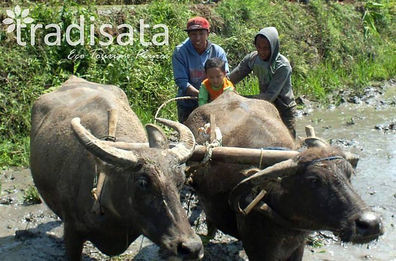 Kelola Wisata Irigasi, BUMDes Sukanagalih Mewakili RI ke Malaysia