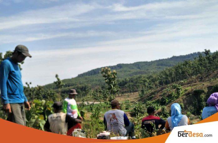 Pengertian Desa Yang Harus Dipahami Warga Pedesaan