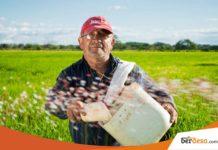 9 Kumpulan Startup Pertanian Di Indonesia Yang Bisa Diandalkan