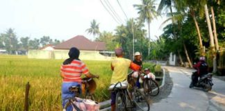 Peluang Usaha Pertanian Di Desa Berkembang Yang Sangat Menguntungkan