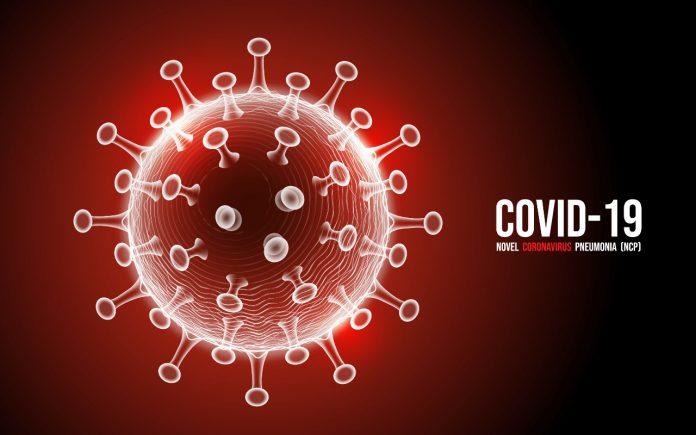 Peluang Usaha Menguntungkan di Masa Pandemi